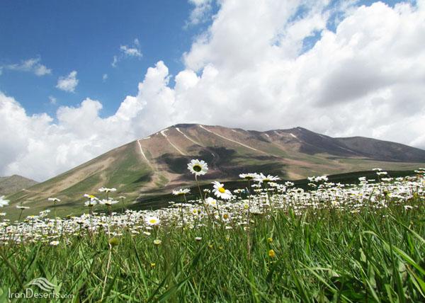 کوه سهند (3)