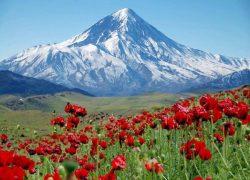 همه چیز درباره قله دماوند + عکس (قسمت ۴)