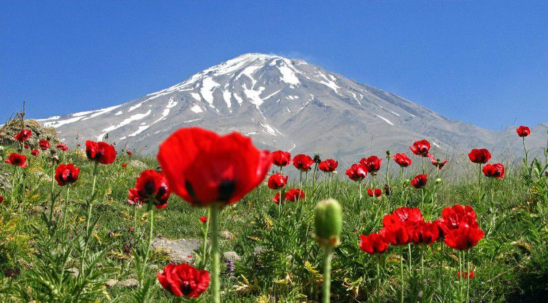تصاویر کوه دماوند