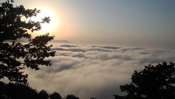 جنگل ابر از ديدني هاي شاهرود