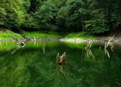 دریاچه زیبای میانشه را بهتر بشناسید + تصاویر بی نظیر