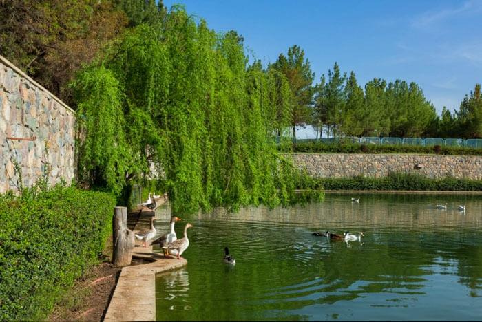 منطقه گردشگری باغرود نیشابور +عکس های اردوگاه فوق العاده زیبا