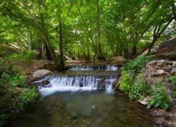 تنگه بستانک معروف به بهشت کوچک ایران + تصاویر