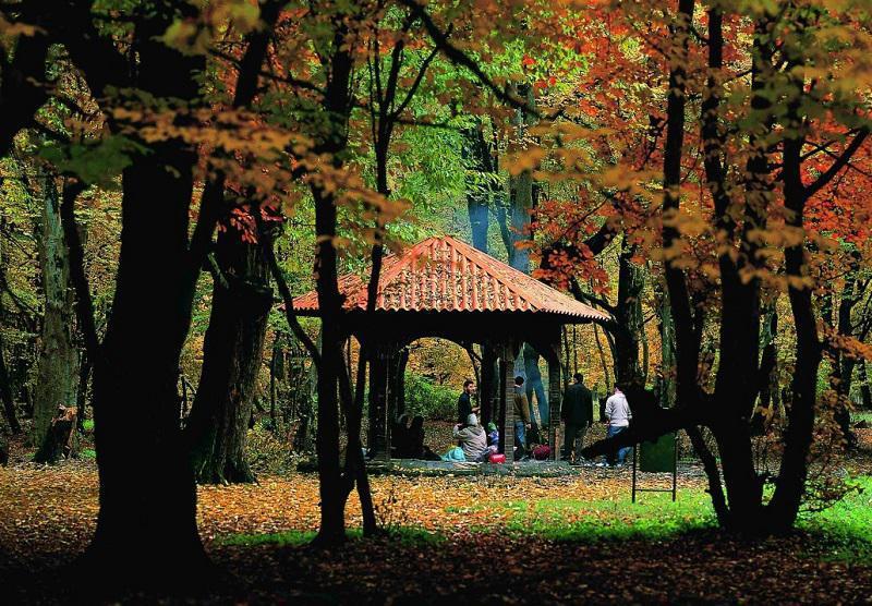 استان گلستان مقصد رؤیایی مسافران در تابستان