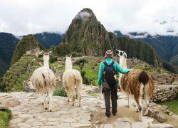 آشنایی با کشور پرو : سرزمین قهوهی آمریکای لاتین (قسمت ۲)