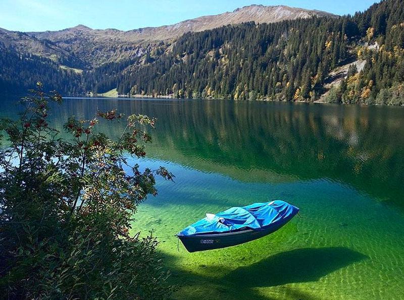 بسیاری بر این باروند که دریاچه آبی نیوزلند دارای زلال ترین اب جهان می باشد.