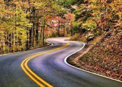 ۳۵ جاده بسیار زیبا و رؤیایی دنیا را بشناسید + عکس