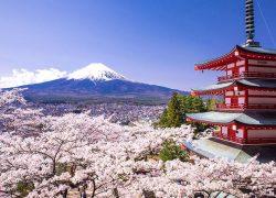 بازدید از ژاپن زیبا و مناطق دیدنی آن + عکس
