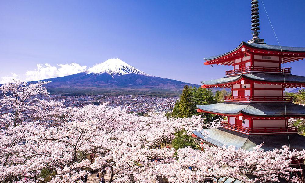 مکان ها و جاذبه های دیدنی کشور ژاپن و جاهای طبیعت شگفت انگیزش +عکس
