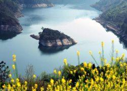از جزیرهٔ لاکپشتی در چین چه می دانید؟ + عکس