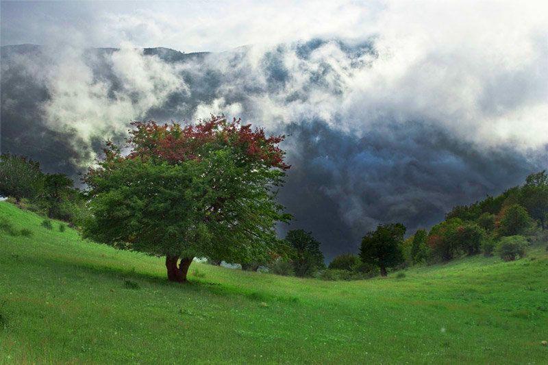 جنگل ابر یکی از بهترین جای شمال برای مسافرت در پاییز