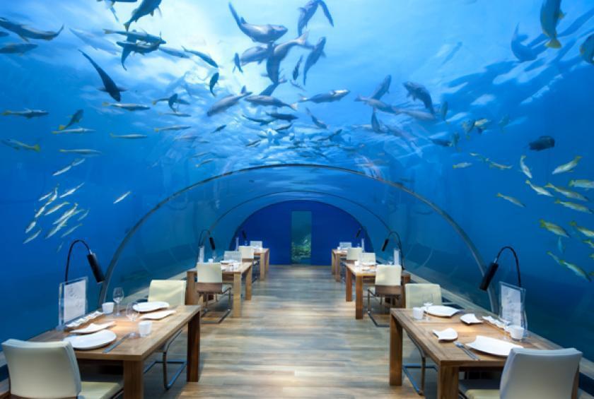رستوران زیر آب در مالدیو Subix: تجربهای حیرت انگیز از غذا خوردن +عکس
