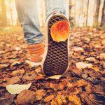 بهترین مکان برای سفر داخلی در پاییز