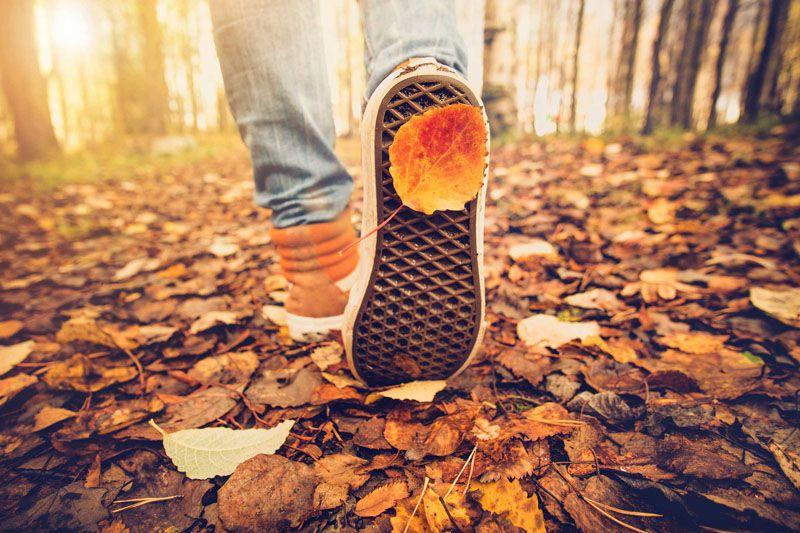بهترین مکان مسافرت در پاییز + تصاویر فوق العاده تور مناسب فصلپاییز