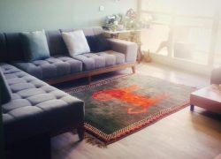 آپارتمان تک خواب مبله در شیراز