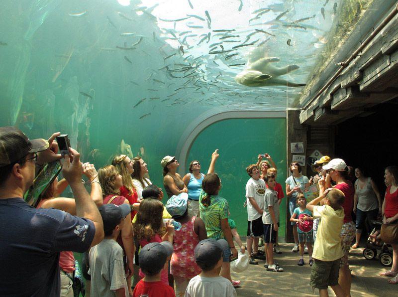 باغ وحش و آکواریوم کلمبوس یکی از بزرگترین باغ وحش در جهان