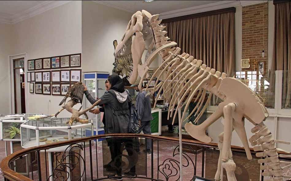 موزه حیاتوحش هفتچنار؛ از جمله مکان های دیدنی تهران