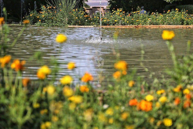باغ شازده ی کرمان