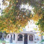 موزه تاریخ علوم پزشکی تهران
