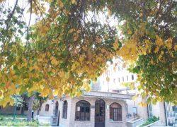 موزه ملی تاریخ علوم پزشکی ایران (دانشگاه تهران) + آدرس(محل دقیق) و عکس