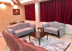 آپارتمان مبله یک خوابه در پاسداران